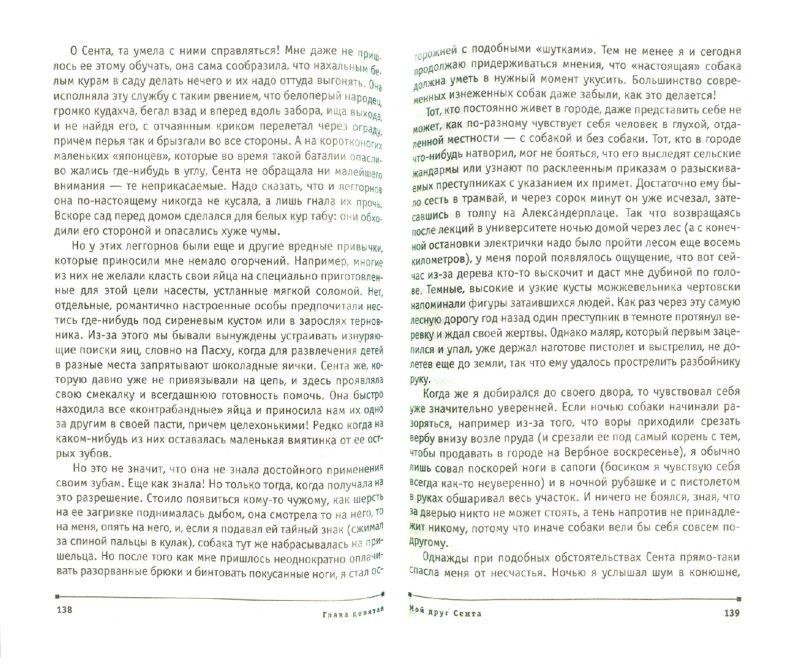 Иллюстрация 1 из 23 для Мы вовсе не такие - Бернгард Гржимек | Лабиринт - книги. Источник: Лабиринт