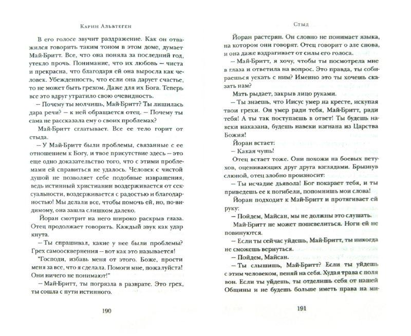 Иллюстрация 1 из 9 для Стыд - Карин Альвтеген | Лабиринт - книги. Источник: Лабиринт