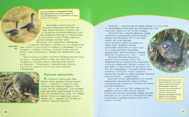 Иллюстрация 1 из 2 для Места заповедные. Книга 1 - Дроздов, Макеев | Лабиринт - книги. Источник: Лабиринт