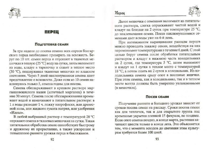 Иллюстрация 1 из 7 для Крепкая рассада для огорода. Гарантия высокого урожая - Николай Звонарев | Лабиринт - книги. Источник: Лабиринт