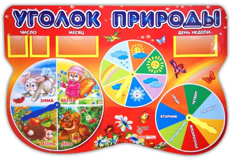 Уголки природы в детском саду своими руками