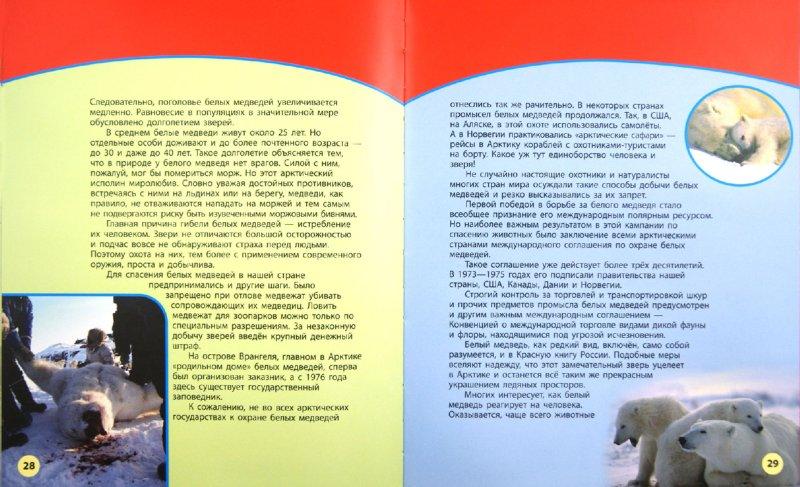 Иллюстрация 1 из 12 для По страницам Красной книги. Книга 1 - Дроздов, Макеев | Лабиринт - книги. Источник: Лабиринт