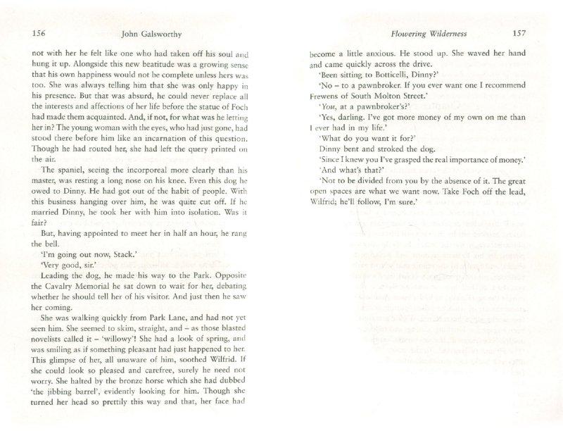 Иллюстрация 1 из 2 для Forsyte Saga: Flowering Wilderness - John Galsworthy | Лабиринт - книги. Источник: Лабиринт