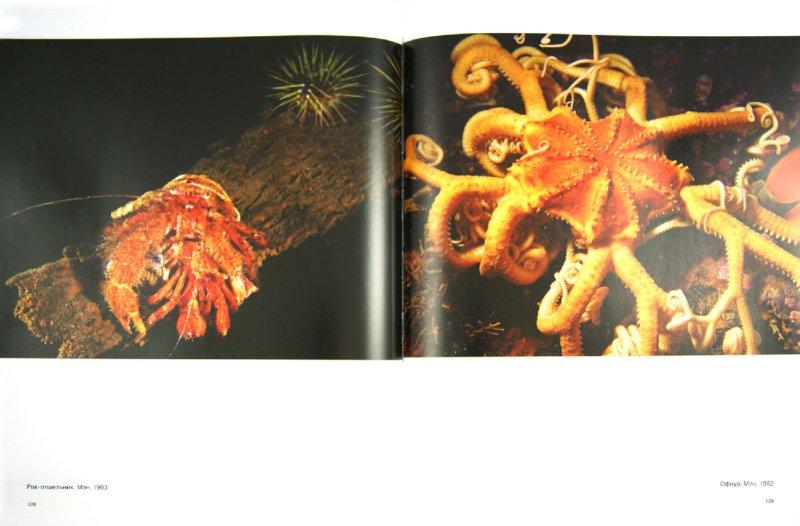 Иллюстрация 1 из 39 для Душа океана - Брайан Скерри | Лабиринт - книги. Источник: Лабиринт
