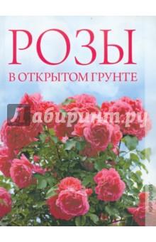 Розы в открытом грунтеСадовые растения<br>В данном издании дается описание наиболее популярных сортов роз, сопровождаемое иллюстративным материалом, а также приводятся рекомендации по выращиванию культур в открытом грунте и уходу за ними. С помощью нашей книги любой желающий сможет с успехом вырастить королеву цветов в своем саду.<br>