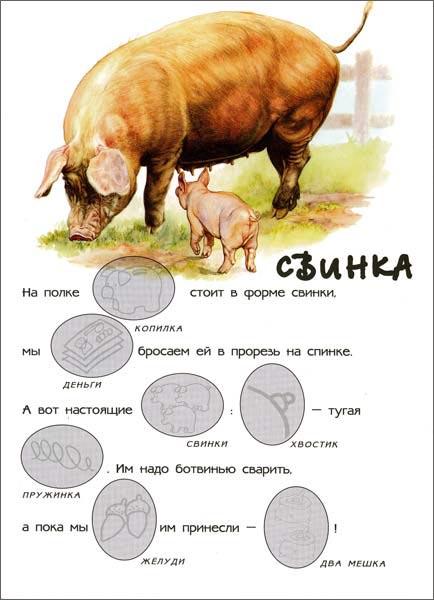 Иллюстрация 1 из 13 для В деревне. Мир животных | Лабиринт - книги. Источник: Лабиринт