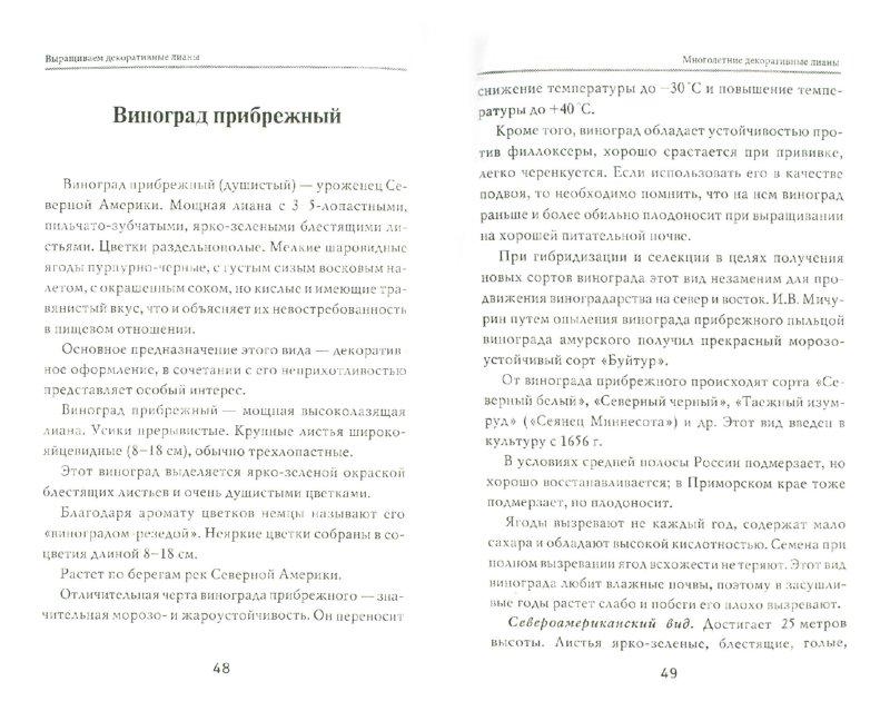Иллюстрация 1 из 4 для Выращиваем декоративные лианы - Любовь Мовсесян | Лабиринт - книги. Источник: Лабиринт
