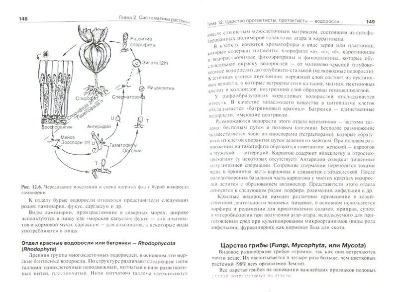 Иллюстрация 1 из 20 для Ботаника. Руководство к практическим занятиям - Барабанов, Зайчикова | Лабиринт - книги. Источник: Лабиринт