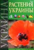 Юрий Гамуля: Растения Украины