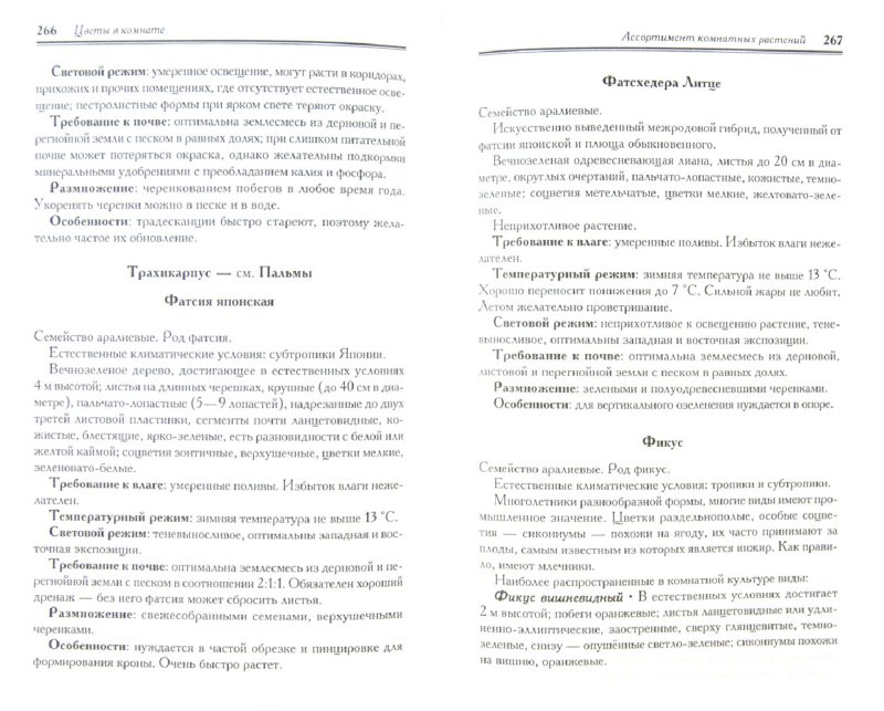 Иллюстрация 1 из 11 для Энциклопедия комнатного цветоводства   Лабиринт - книги. Источник: Лабиринт