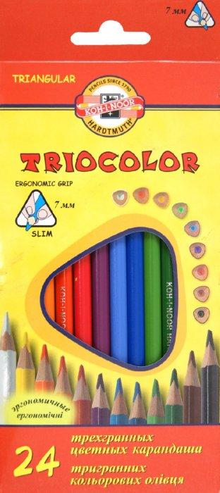 Иллюстрация 1 из 7 для Карандаши цветные, 24 цвета (3134)   Лабиринт - канцтовы. Источник: Лабиринт