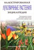 Дейк Ван: Луковичные растения. Иллюстрированная энциклопедия
