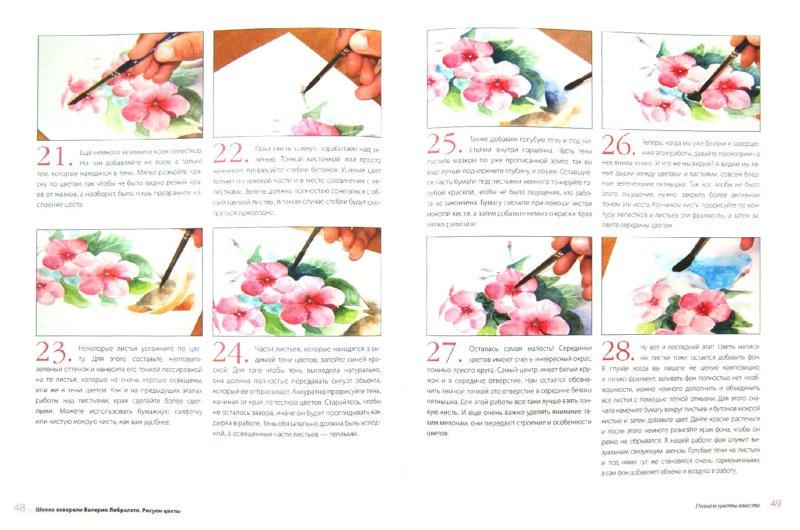 Иллюстрация 1 из 7 для Школа акварели Валерио Либралато. Рисуем цветы - Либралато, Лаптева | Лабиринт - книги. Источник: Лабиринт