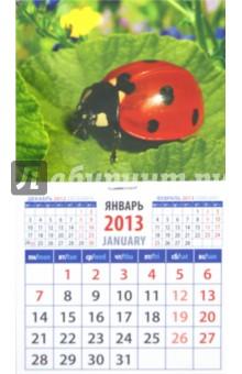 "Календарь 2013 ""Божья коровка"" (20317)"