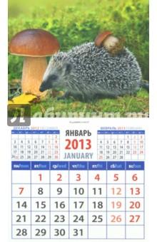 """Календарь 2013 """"Ежик с грибом"""" (20321)"""