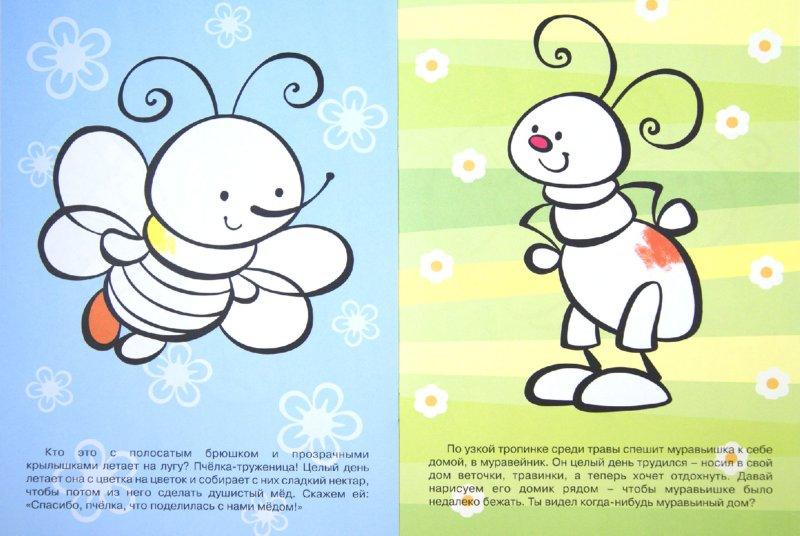 Иллюстрация 1 из 8 для Насекомые   Лабиринт - книги. Источник: Лабиринт