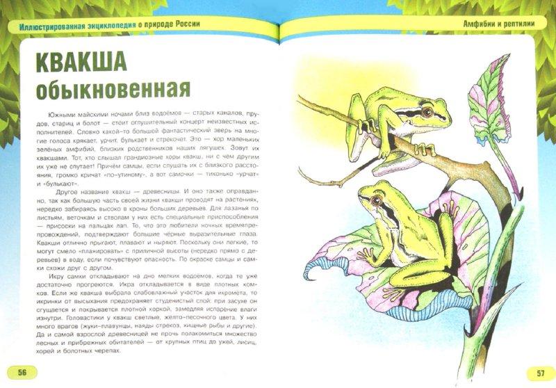 Иллюстрация 1 из 11 для У воды и под водой - Сергей Шустов | Лабиринт - книги. Источник: Лабиринт