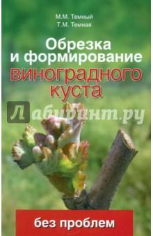 Обрезка и формирование виноградного куста