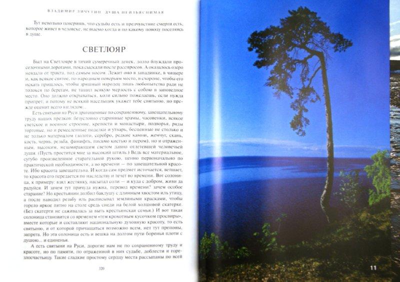 Иллюстрация 1 из 7 для Душа неизъяснимая. Размышления о русском народе - Владимир Личутин | Лабиринт - книги. Источник: Лабиринт