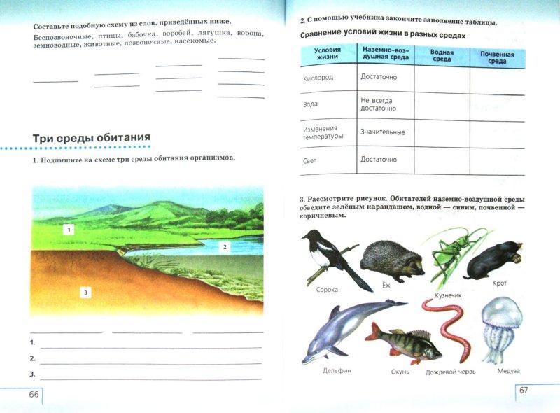 Иллюстрация 1 из 12 для Введение в естественно-научные предметы. Естествознание. 5 класс. Рабочая тетрадь. Вертикаль. ФГОС - Плешаков, Сонин   Лабиринт - книги. Источник: Лабиринт