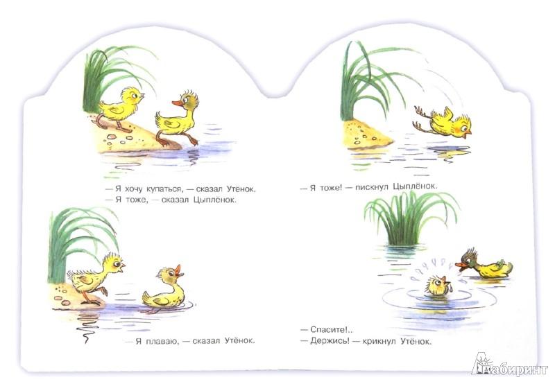 Иллюстрация 1 из 13 для Цыпленок и Утенок - Владимир Сутеев | Лабиринт - книги. Источник: Лабиринт