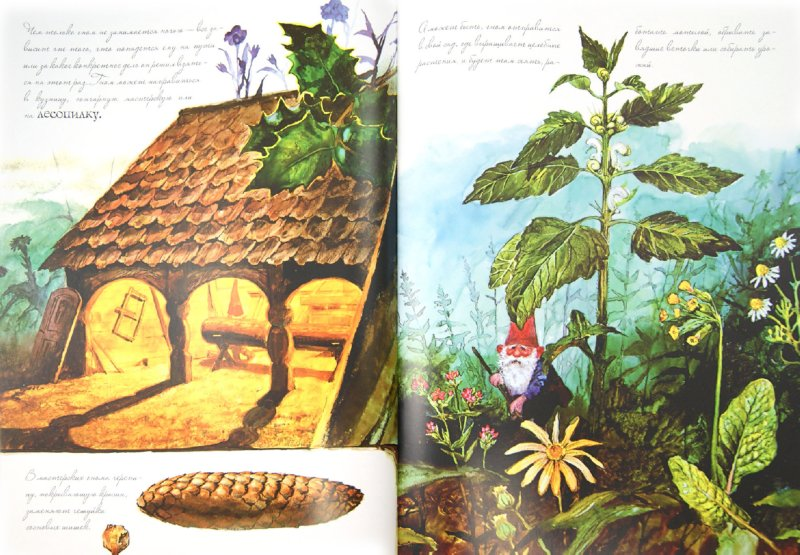Иллюстрация 1 из 58 для Энциклопедия гномов - Вил Хёйген   Лабиринт - книги. Источник: Лабиринт