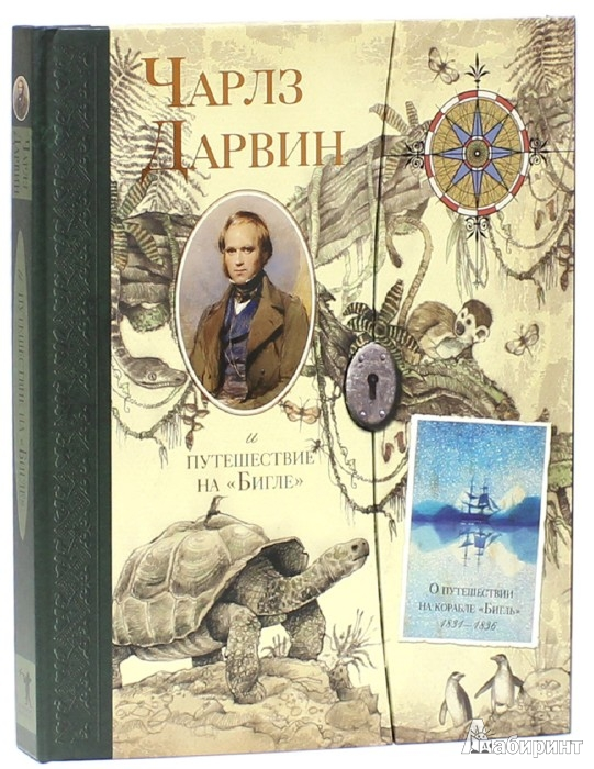 "Иллюстрация 1 из 50 для Чарлз Дарвин и путешествие на ""Бигле"" - Твист, Вуд | Лабиринт - книги. Источник: Лабиринт"