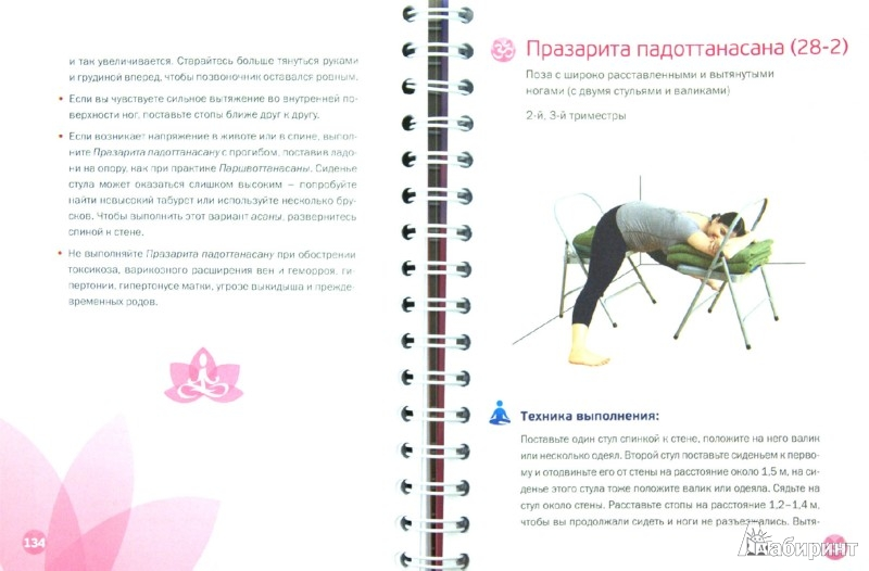 Иллюстрация 1 из 8 для Айенгар йога. Счастливая мама - Мария Шифферс   Лабиринт - книги. Источник: Лабиринт