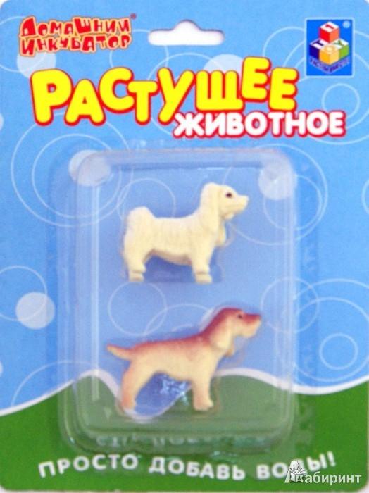 Иллюстрация 1 из 6 для Домашний инкубатор. Собаки (2 шт.) ассортимент (Т53572) | Лабиринт - игрушки. Источник: Лабиринт