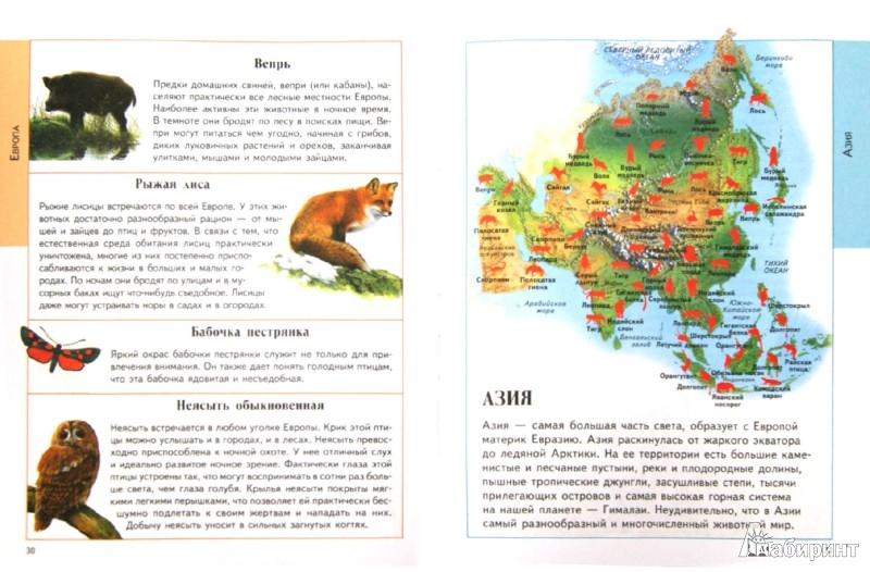 Иллюстрация 1 из 26 для Животные. Детский иллюстрированный атлас - Анита Ганери | Лабиринт - книги. Источник: Лабиринт