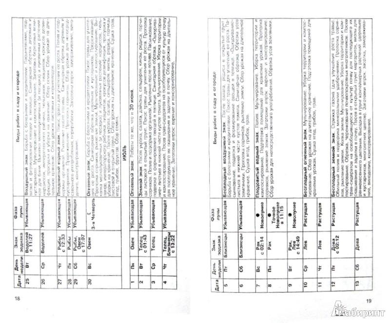 Иллюстрация 1 из 6 для Лунный календарь земледельца 2013 год - Шошина, Красавцева | Лабиринт - книги. Источник: Лабиринт
