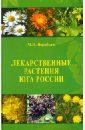 Лекарственные растения Юга России