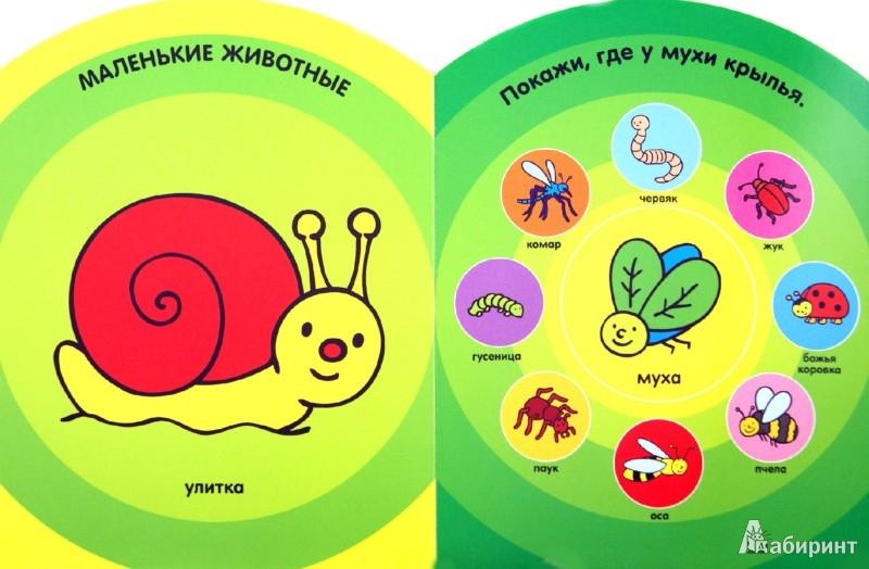 Иллюстрация 1 из 14 для Животные. Мой первый словарик. 1-2 года | Лабиринт - книги. Источник: Лабиринт