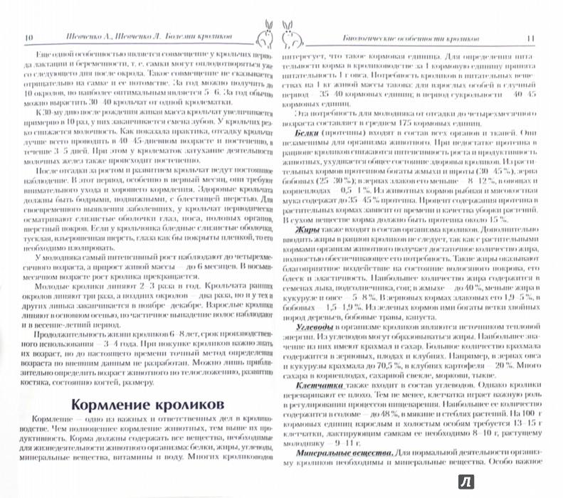 Иллюстрация 1 из 3 для Болезни кроликов - Шевченко, Шевченко | Лабиринт - книги. Источник: Лабиринт