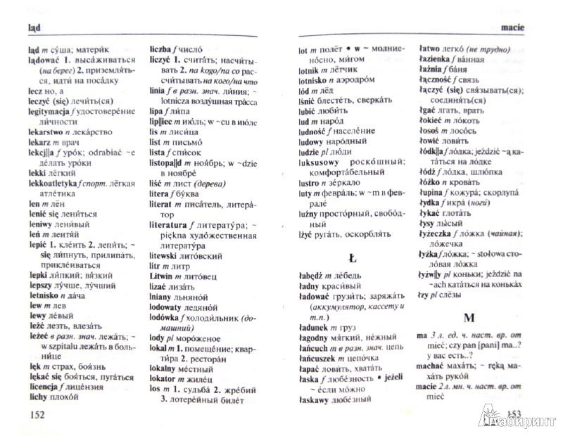 Иллюстрация 1 из 6 для Польский язык. Три книги в одной. Грамматика, разговорник, словарь | Лабиринт - книги. Источник: Лабиринт