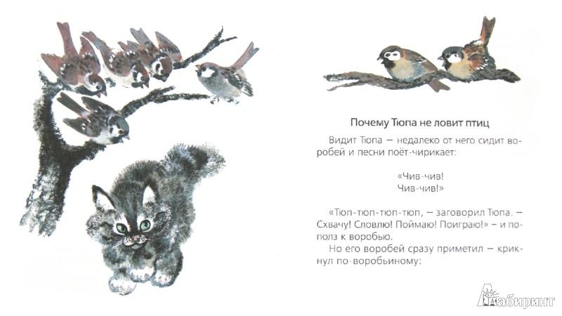 Иллюстрация 1 из 10 для Почему Тюпа не ловит птиц - Евгений Чарушин | Лабиринт - книги. Источник: Лабиринт