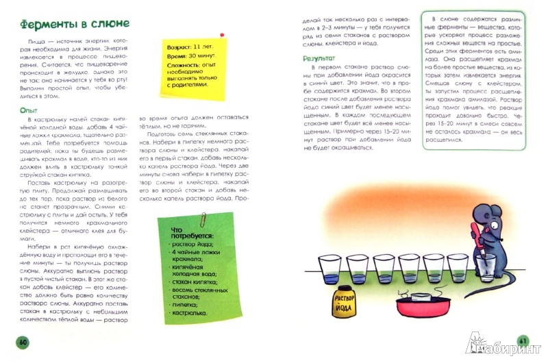 Иллюстрация 1 из 28 для Биология. Веселые научные опыты для детей и взрослых - Сергей Болушевский | Лабиринт - книги. Источник: Лабиринт