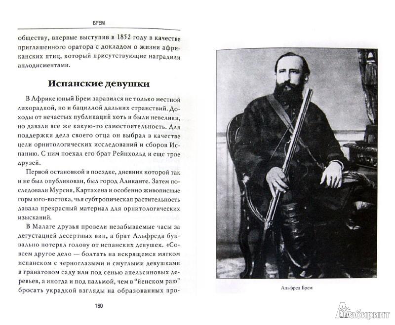 Иллюстрация 1 из 17 для Брем - Николай Непомнящий   Лабиринт - книги. Источник: Лабиринт