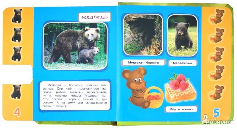 Иллюстрация 1 из 8 для Кто в лесу живет? Листай странички-учи цифры! Узнавай! Учись! Играй! | Лабиринт - книги. Источник: Лабиринт