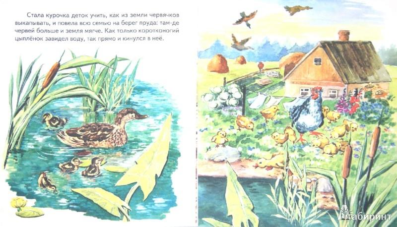 Иллюстрация 1 из 34 для Чужое яичко - Константин Ушинский | Лабиринт - книги. Источник: Лабиринт