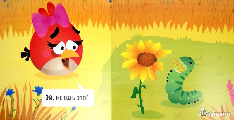 Иллюстрация 1 из 14 для Angry Birds. Чудо   Лабиринт - книги. Источник: Лабиринт