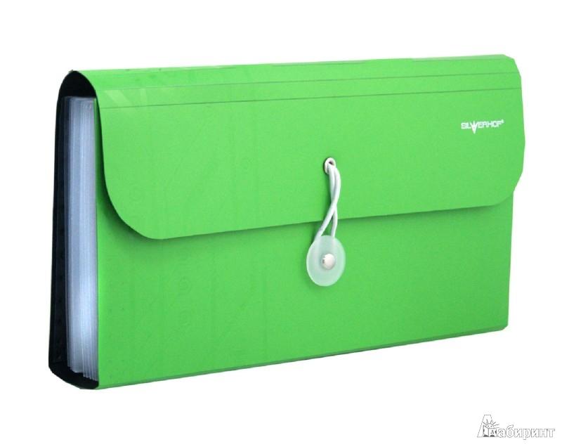 Иллюстрация 1 из 2 для Папка-портфель на резинке. DISCOVERY. Цвет: зеленый (255036-03) | Лабиринт - канцтовы. Источник: Лабиринт
