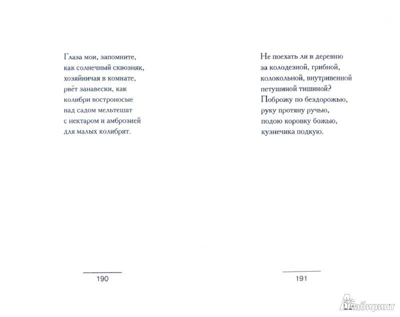 Иллюстрация 1 из 8 для Либретто. Стихи. Проза. Рисунки - Вера Павлова   Лабиринт - книги. Источник: Лабиринт