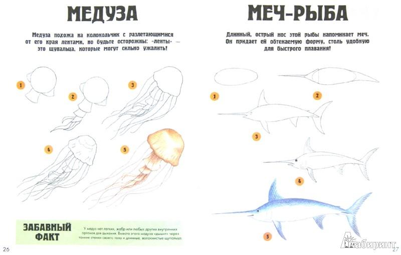 Иллюстрация 1 из 14 для Обитатели моря | Лабиринт - книги. Источник: Лабиринт