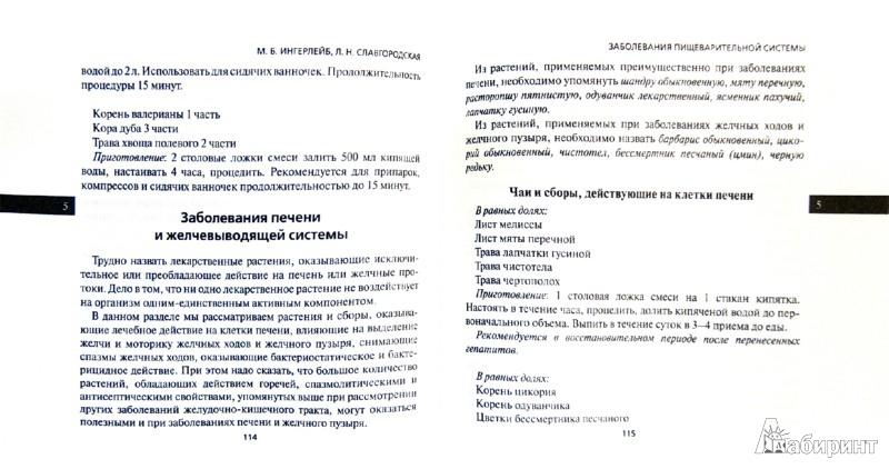 Иллюстрация 1 из 20 для Лечебные чаи - Ингерлейб, Славгородская   Лабиринт - книги. Источник: Лабиринт