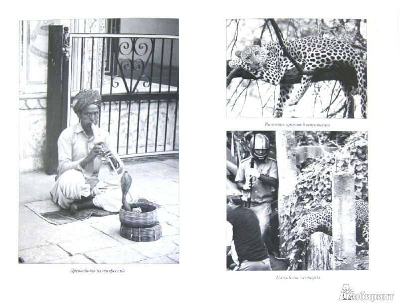 Иллюстрация 1 из 9 для Тайные общества Черной Африки - Николай Непомнящий   Лабиринт - книги. Источник: Лабиринт