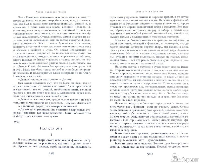 Иллюстрация 1 из 45 для Дама с собачкой. Повести и рассказы - Антон Чехов   Лабиринт - книги. Источник: Лабиринт