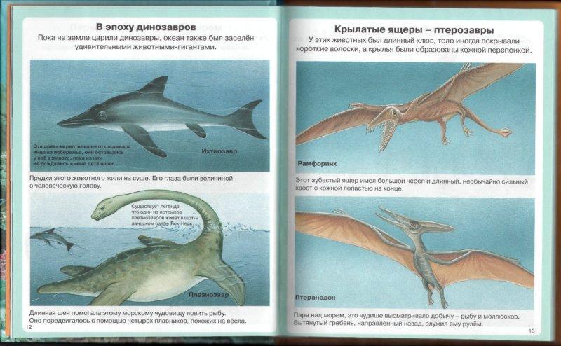 Иллюстрация 1 из 39 для Тайны моря - Мари-Рене Пимон | Лабиринт - книги. Источник: Лабиринт