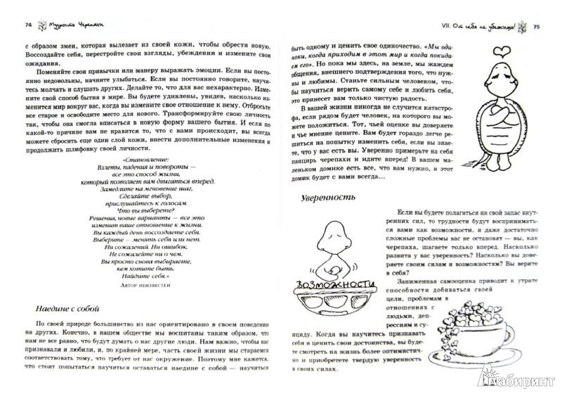 Иллюстрация 1 из 16 для Мудрость Черепахи - Донна Деномм | Лабиринт - книги. Источник: Лабиринт
