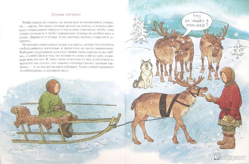Иллюстрация 1 из 17 для Вот ты какой, северный олень! - Александр Ткаченко | Лабиринт - книги. Источник: Лабиринт